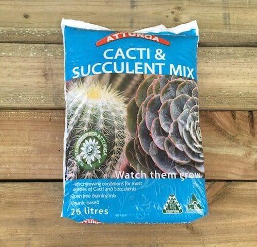 Cacti & Succulent Potting Mix