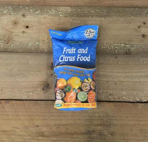 Fruit and Citrus Food