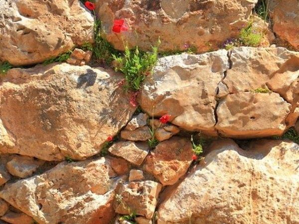 Golden Granite Rock