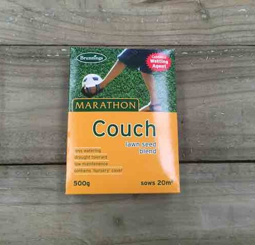 Couch Lawn Seed Blend
