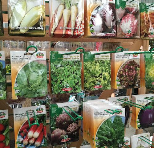 Vegie Seeds