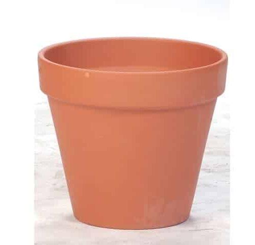 Terracotta Standard Cone