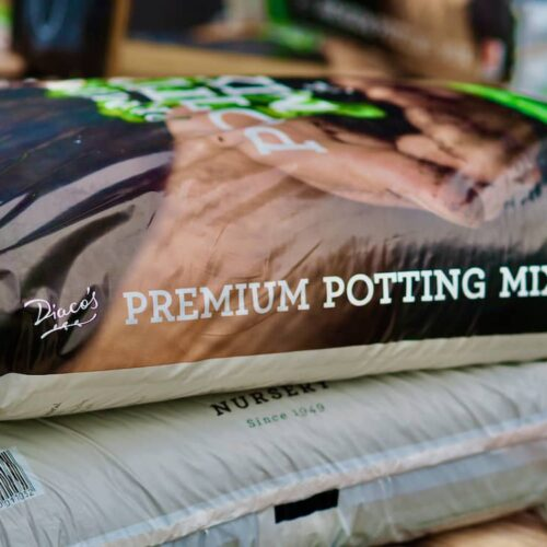 Diaco's Premium Potting Mix