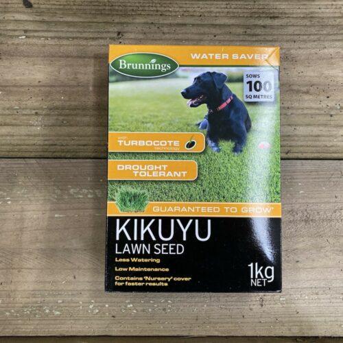 Kikuyu Lawn Seed