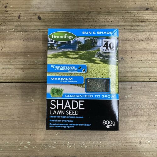 Shade Lawn Seed